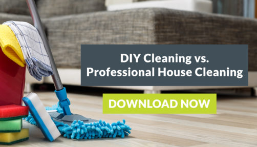 DIY Cleaning vs. Professional House Cleaning